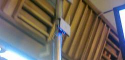 antena_thumb